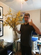 The Forsythia, which we got back